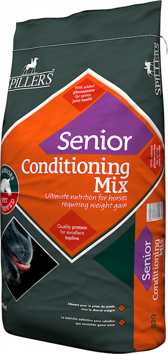Senior_Condition_4c1758d15dee0.jpg