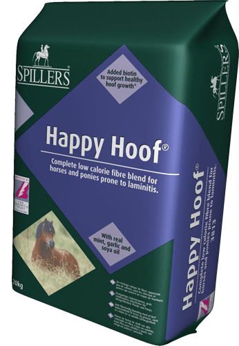 Happy_Hoof_4bf0f10ced4e7.png