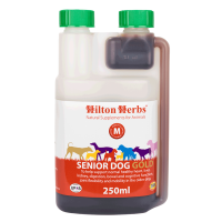 UK-SENIOR-DOG-250ml-600x6005